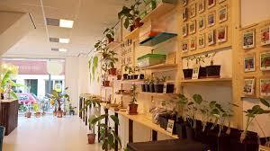 onszaden web shop winkel wageningen bijzondere exotic zaden seeds startlife startup